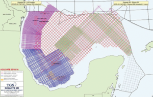 TGS and Schlumberger are commencing surveys in 306 blocks in the US GOM. Final processed data is expected to be available by early 2018.